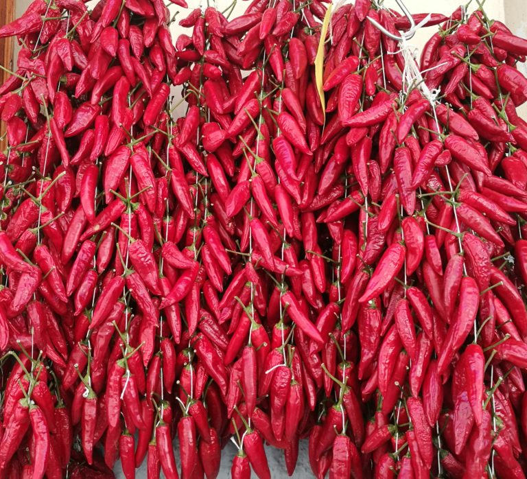 Paprika e peperoncino differenze