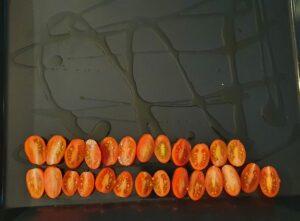 teglia con pomodorini spaccati in due per caramellarli in forno