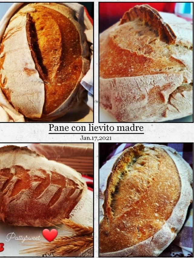 immagini di pane fatto con lievito madre